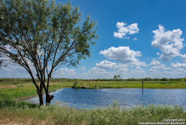 282 ACRES Bluntzner Road, Jourdanton, TX 78026 (MLS #1558076) :: Phyllis Browning Company