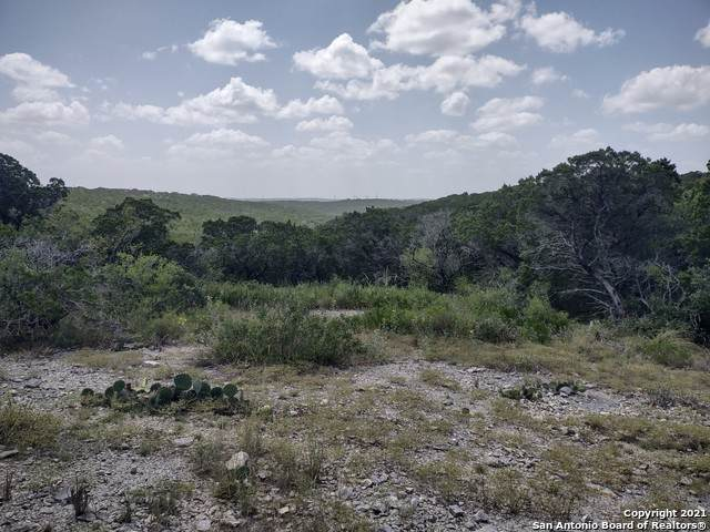 LOT 18 Pr 2775, Mico, TX 78056 (MLS #1558120) :: Alexis Weigand Real Estate Group
