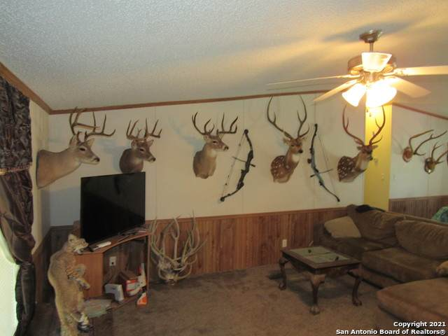 1835 Bois D Arc Access Rd, Junction, TX 76849 (MLS #1558313) :: Texas Premier Realty