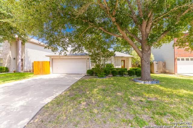 9787 Alexa Pl, San Antonio, TX 78251 (MLS #1558379) :: Exquisite Properties, LLC