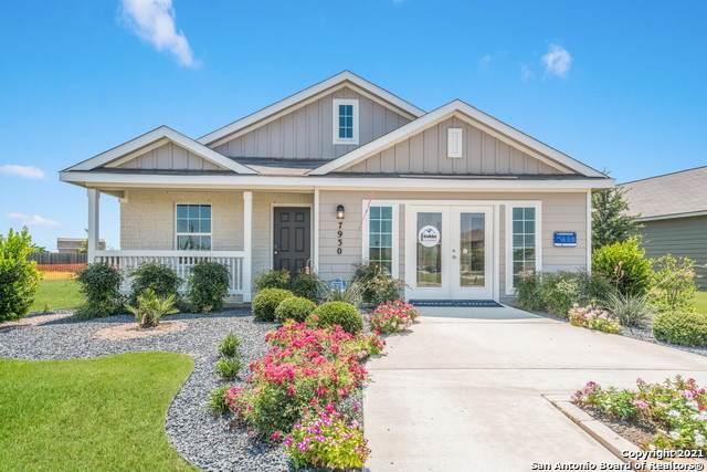 31686 Untrodden Way, Bulverde, TX 78163 (MLS #1558579) :: Phyllis Browning Company