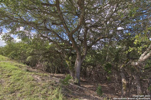 474 Herauf Dr, Canyon Lake, TX 78133 (MLS #1558592) :: The Lopez Group