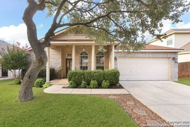 407 Neches Branch, San Antonio, TX 78258 (MLS #1558872) :: Phyllis Browning Company