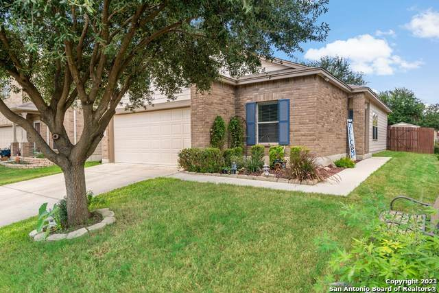 11215 Clusius, Helotes, TX 78023 (MLS #1558882) :: Real Estate by Design