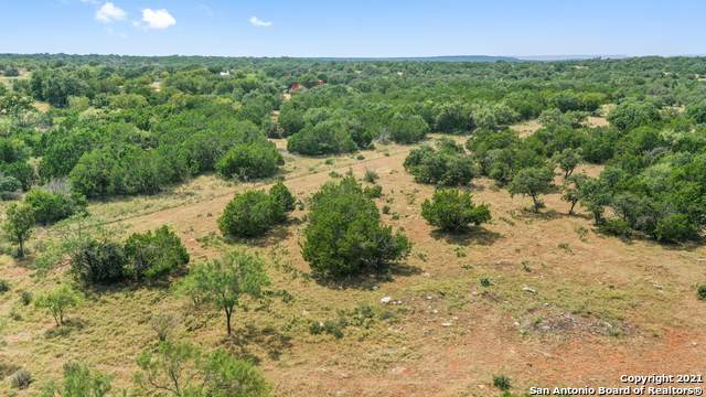 9553 Smith-West Rd, Round Mountain, TX 78663 (MLS #1558972) :: EXP Realty