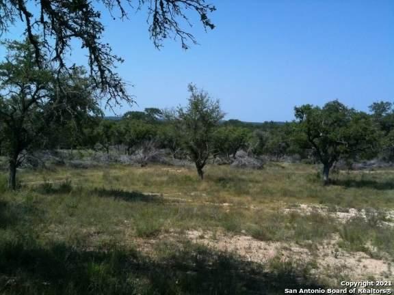 678 E Ammann Rd., Bulverde, TX 78163 (MLS #1559012) :: BHGRE HomeCity San Antonio