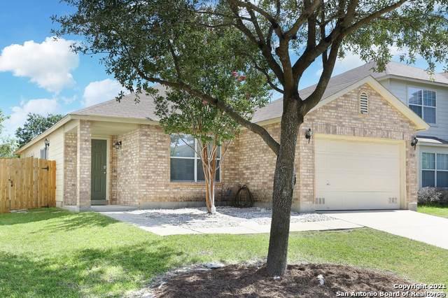 11131 Vollmer Ln, San Antonio, TX 78254 (MLS #1559024) :: Alexis Weigand Real Estate Group