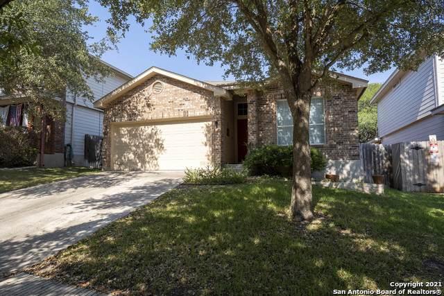 15830 Drexel Run, San Antonio, TX 78247 (MLS #1559026) :: Alexis Weigand Real Estate Group