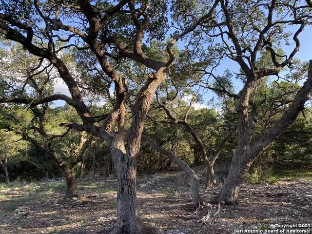 1427 Merlot, New Braunfels, TX 78132 (MLS #1559080) :: Carter Fine Homes - Keller Williams Heritage