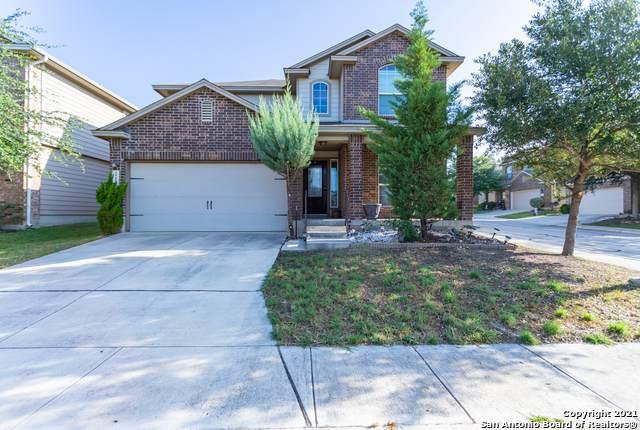 12103 Dawes Pt, San Antonio, TX 78254 (MLS #1559097) :: EXP Realty
