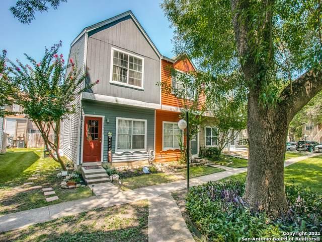 12258 Lemon Blossom, San Antonio, TX 78247 (MLS #1559170) :: Alexis Weigand Real Estate Group