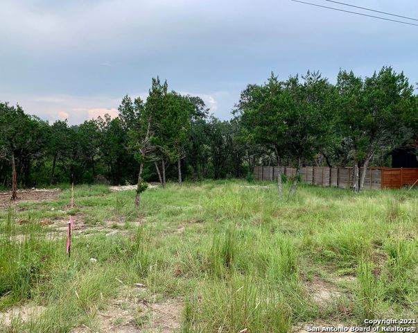 LOT 150 Stagecoach, Spring Branch, TX 78070 (MLS #1559203) :: Phyllis Browning Company