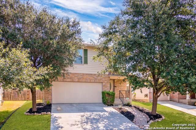 5434 Antler Cyn, San Antonio, TX 78252 (MLS #1559209) :: The Glover Homes & Land Group