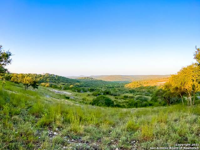 LOT 147 Majestic Hills Ranch, Blanco, TX 78606 (MLS #1559240) :: The Glover Homes & Land Group