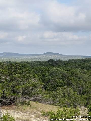 2201 The Low Rd, San Marcos, TX 78666 (MLS #1559257) :: Phyllis Browning Company