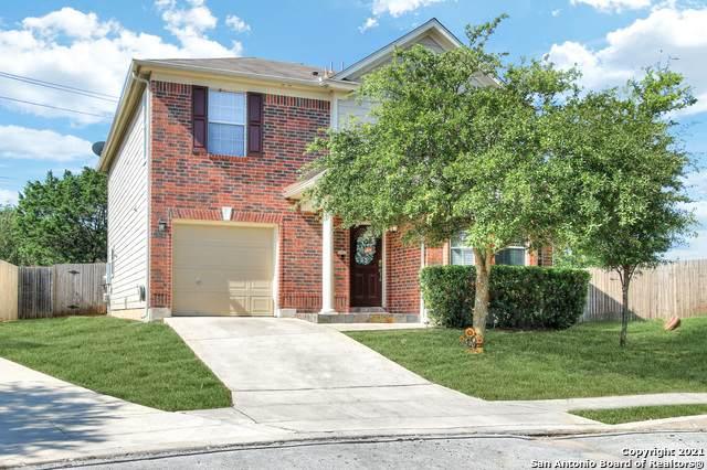 13503 Royal Wall, San Antonio, TX 78249 (MLS #1559328) :: Texas Premier Realty