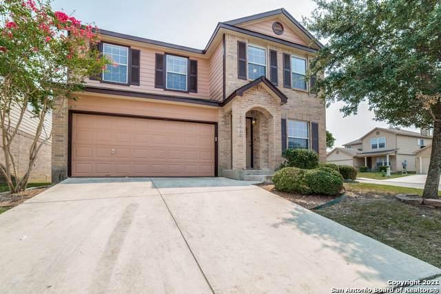 24618 Magnolia Falls, San Antonio, TX 78261 (MLS #1559355) :: Texas Premier Realty