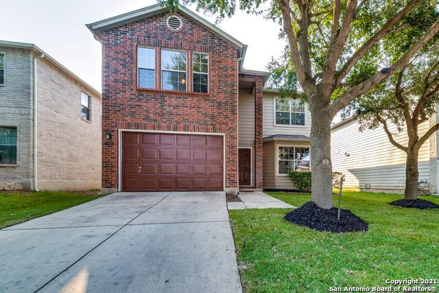 10718 Terrace Ridge, San Antonio, TX 78223 (MLS #1559395) :: Countdown Realty Team