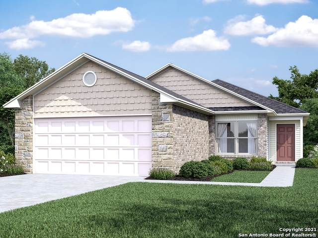 3303 Andromeda Way, Converse, TX 78109 (MLS #1559413) :: Alexis Weigand Real Estate Group