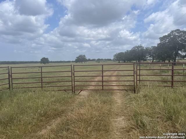 554 County Road 434, Stockdale, TX 78160 (MLS #1559529) :: Texas Premier Realty
