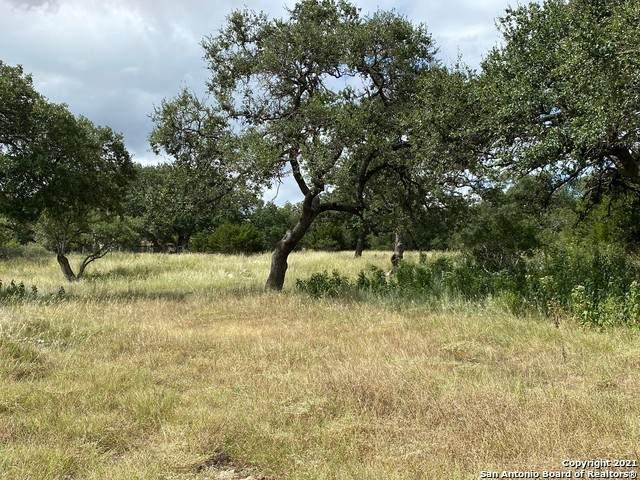 1510 Syrah, New Braunfels, TX 78132 (MLS #1559557) :: Carter Fine Homes - Keller Williams Heritage