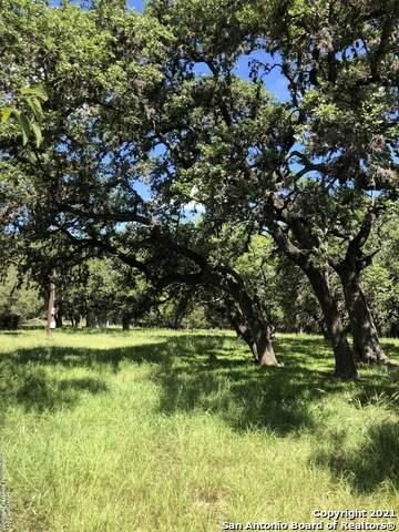 6485 Hollyhock Rd, San Antonio, TX 78240 (MLS #1559774) :: Concierge Realty of SA