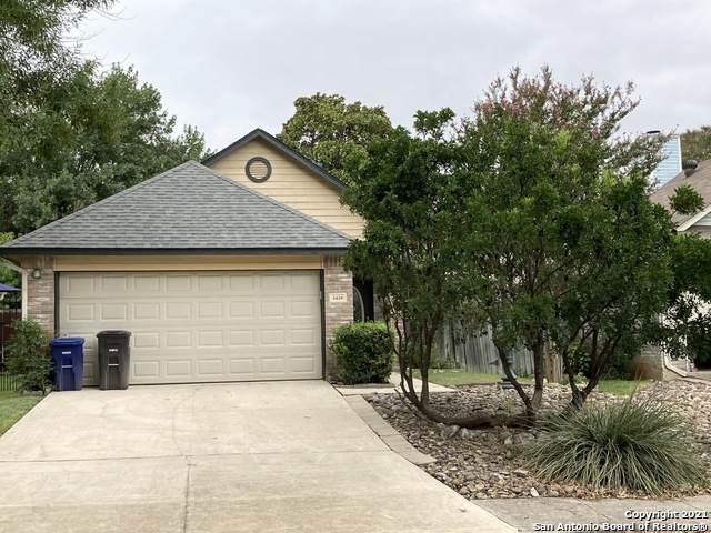 5839 Spring Cabin, San Antonio, TX 78247 (MLS #1559788) :: Phyllis Browning Company