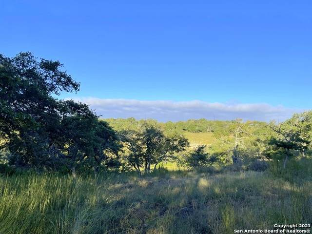 LOT 37 Moon Beam Ct, Blanco, TX 78606 (MLS #1559791) :: The Glover Homes & Land Group
