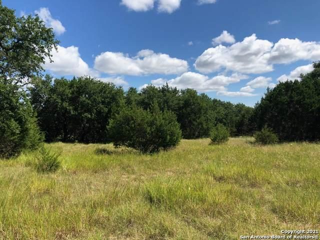 645 Lantana Ridge, Spring Branch, TX 78070 (MLS #1559805) :: The Lopez Group