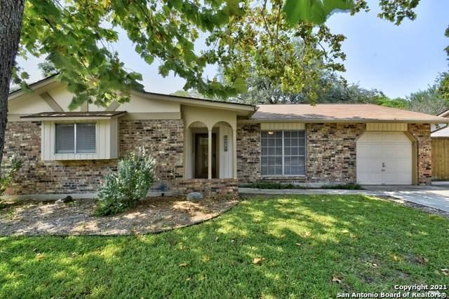 6614 Peach Tree St, Leon Valley, TX 78238 (MLS #1559831) :: Concierge Realty of SA