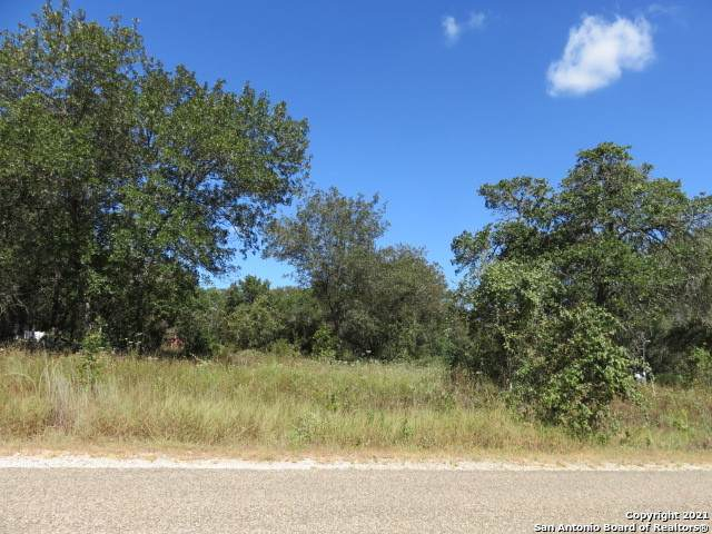 22751 Red Sand Dr, San Antonio, TX 78264 (MLS #1559912) :: The Glover Homes & Land Group