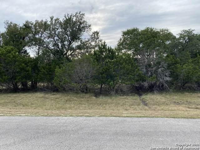 419 Long Ridge, Spring Branch, TX 78070 (MLS #1559914) :: Texas Premier Realty
