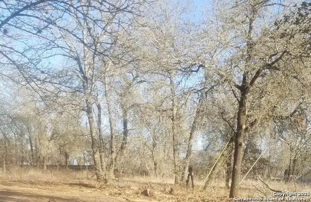 3923 Waterbrook Dr, Elmendorf, TX 78112 (MLS #1559984) :: Concierge Realty of SA