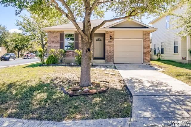 11102 Hollow Cyn, San Antonio, TX 78252 (MLS #1560017) :: The Glover Homes & Land Group