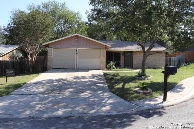 16410 Spruce Cove St, San Antonio, TX 78247 (MLS #1560036) :: EXP Realty