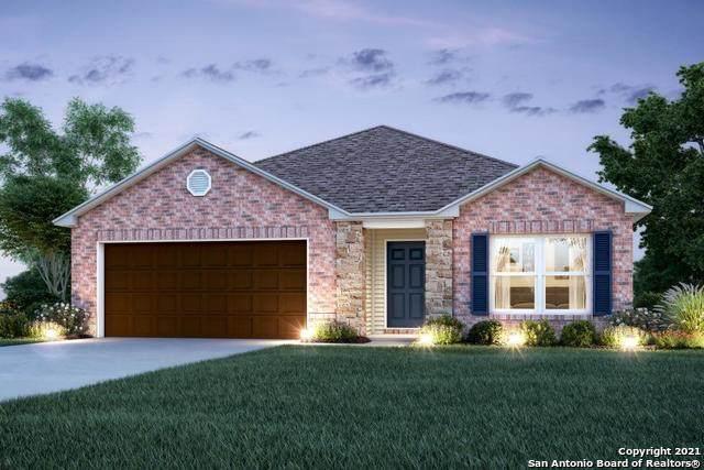 13003 Heathers Reef, St Hedwig, TX 78152 (MLS #1560144) :: Exquisite Properties, LLC