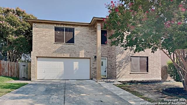 5850 Spring Pebble, San Antonio, TX 78247 (MLS #1560218) :: Phyllis Browning Company