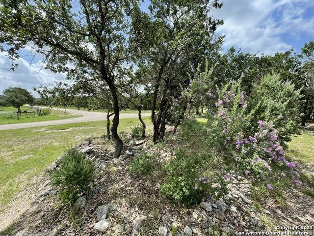 111 County Road 247, Hondo, TX 78861 (MLS #1560232) :: The Glover Homes & Land Group