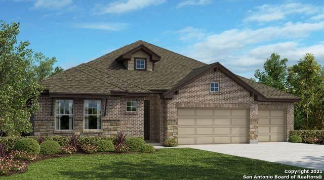 1302 Yaupon Loop, New Braunfels, TX 78132 (MLS #1560249) :: Carter Fine Homes - Keller Williams Heritage