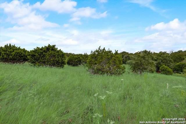 1222 Cattle Dell, New Braunfels, TX 78132 (#1560258) :: Zina & Co. Real Estate