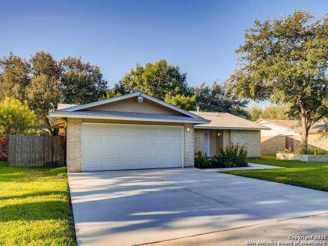6923 Lordsport, San Antonio, TX 78239 (MLS #1560286) :: Alexis Weigand Real Estate Group
