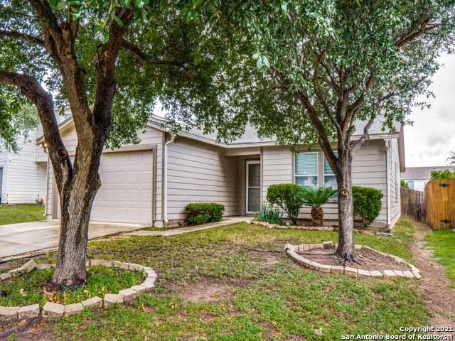 9031 Sycamore Cove, San Antonio, TX 78245 (MLS #1560352) :: The Gradiz Group