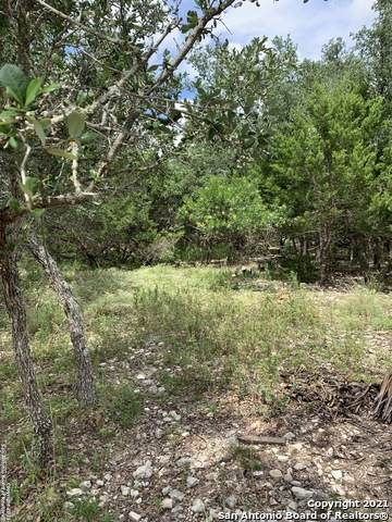 9811 Scenic View Dr, San Antonio, TX 78255 (MLS #1560389) :: EXP Realty
