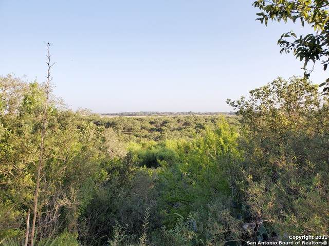 1615 State Highway 97 W, Floresville, TX 78114 (MLS #1560449) :: Alexis Weigand Real Estate Group
