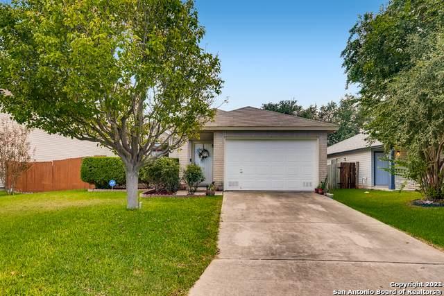 5619 Camry Springs, San Antonio, TX 78251 (MLS #1560461) :: Carolina Garcia Real Estate Group