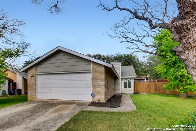 16400 Spruce Leaf St, San Antonio, TX 78247 (MLS #1560509) :: EXP Realty