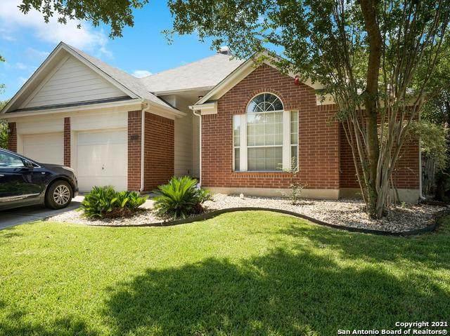 11311 Fair Hollow Dr, San Antonio, TX 78249 (MLS #1560512) :: EXP Realty