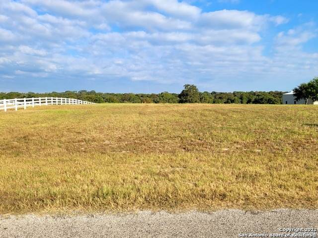 213 Abrego Lake Dr, Floresville, TX 78114 (MLS #1560670) :: The Glover Homes & Land Group