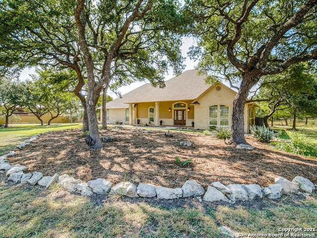 125 Calendula St, Spring Branch, TX 78070 (MLS #1560692) :: Alexis Weigand Real Estate Group