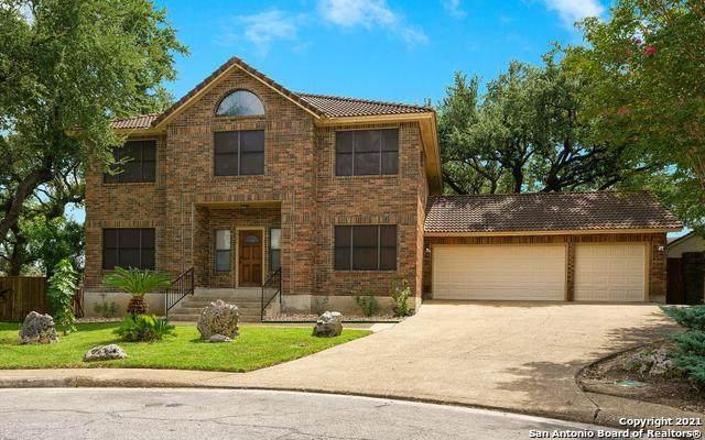 3902 Creek Pt, San Antonio, TX 78230 (MLS #1560759) :: Sheri Bailey Realtor